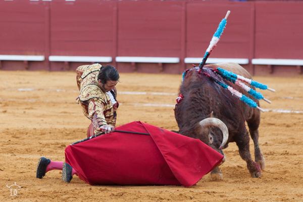 Puerta grande para Padilla en su despedida de Jerez